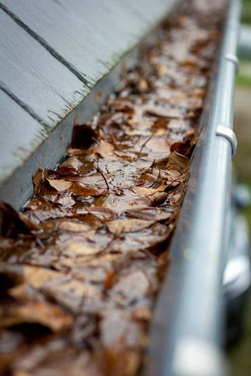 gutter maintenance services